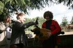 Zmiany w zagrodzie żubrów w Prätenow